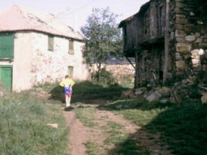 Camino28