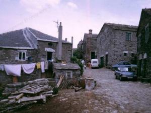 Camino38